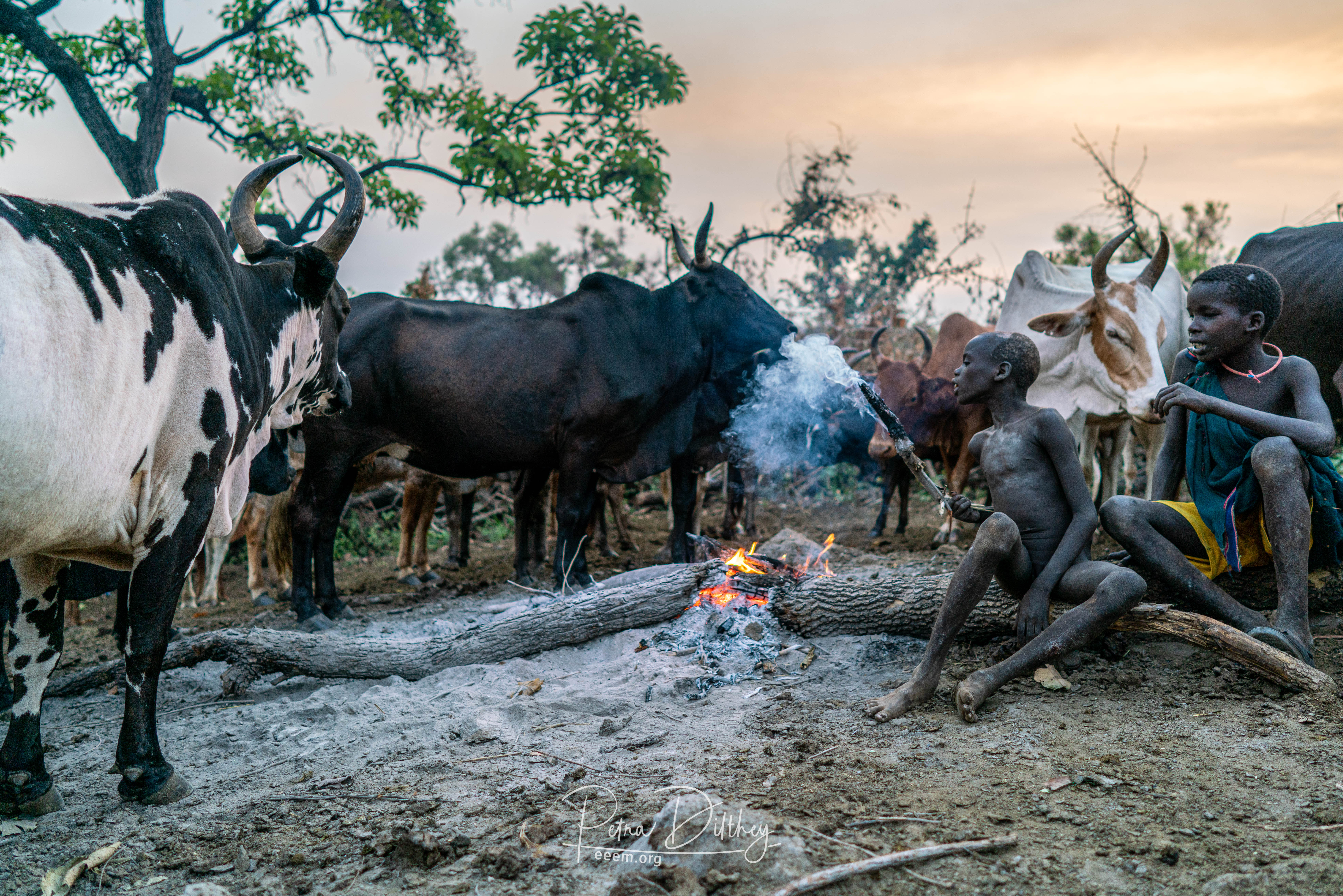 Kibish cattle camp