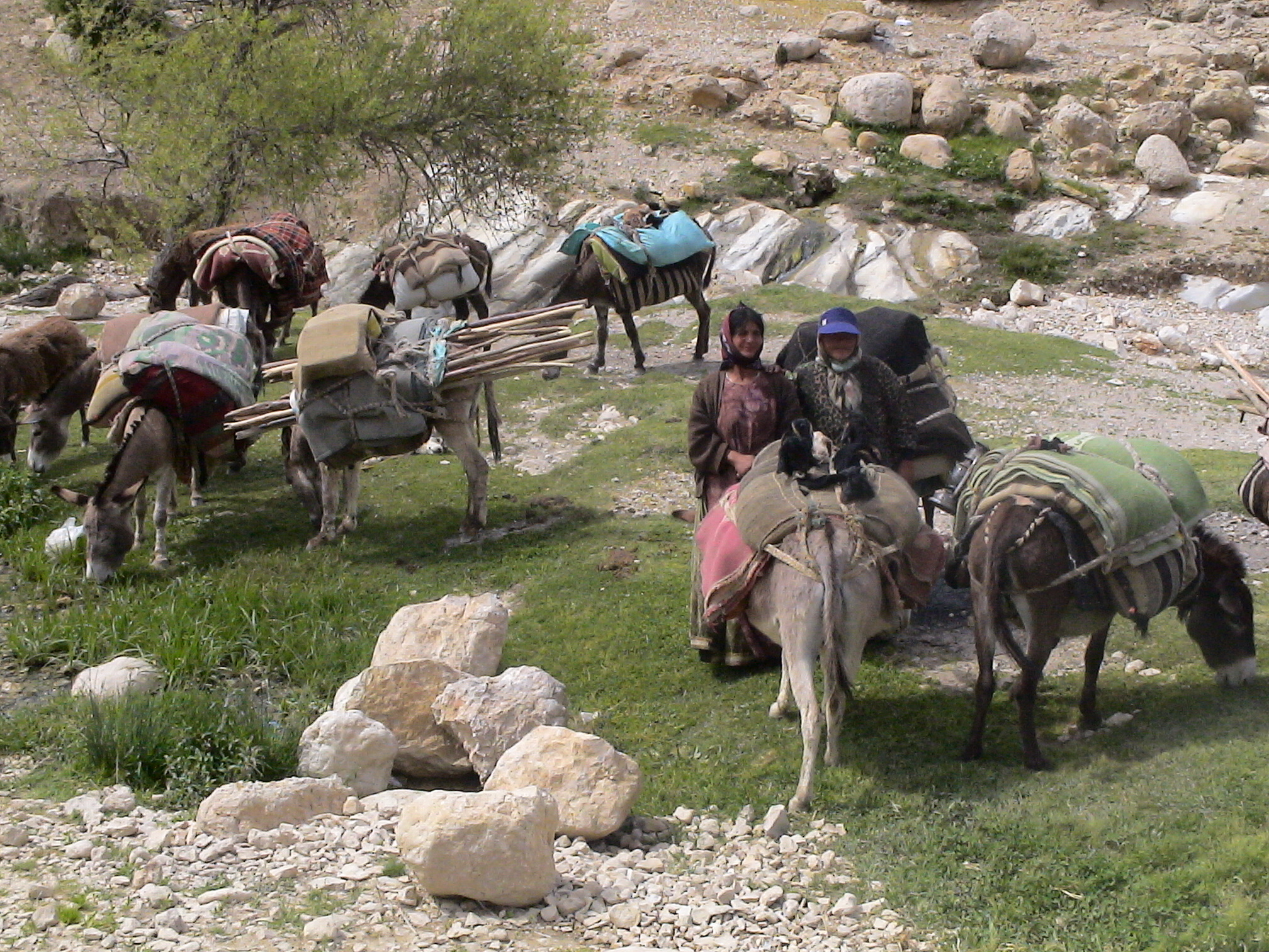 Nomadic pastoralists in Uran