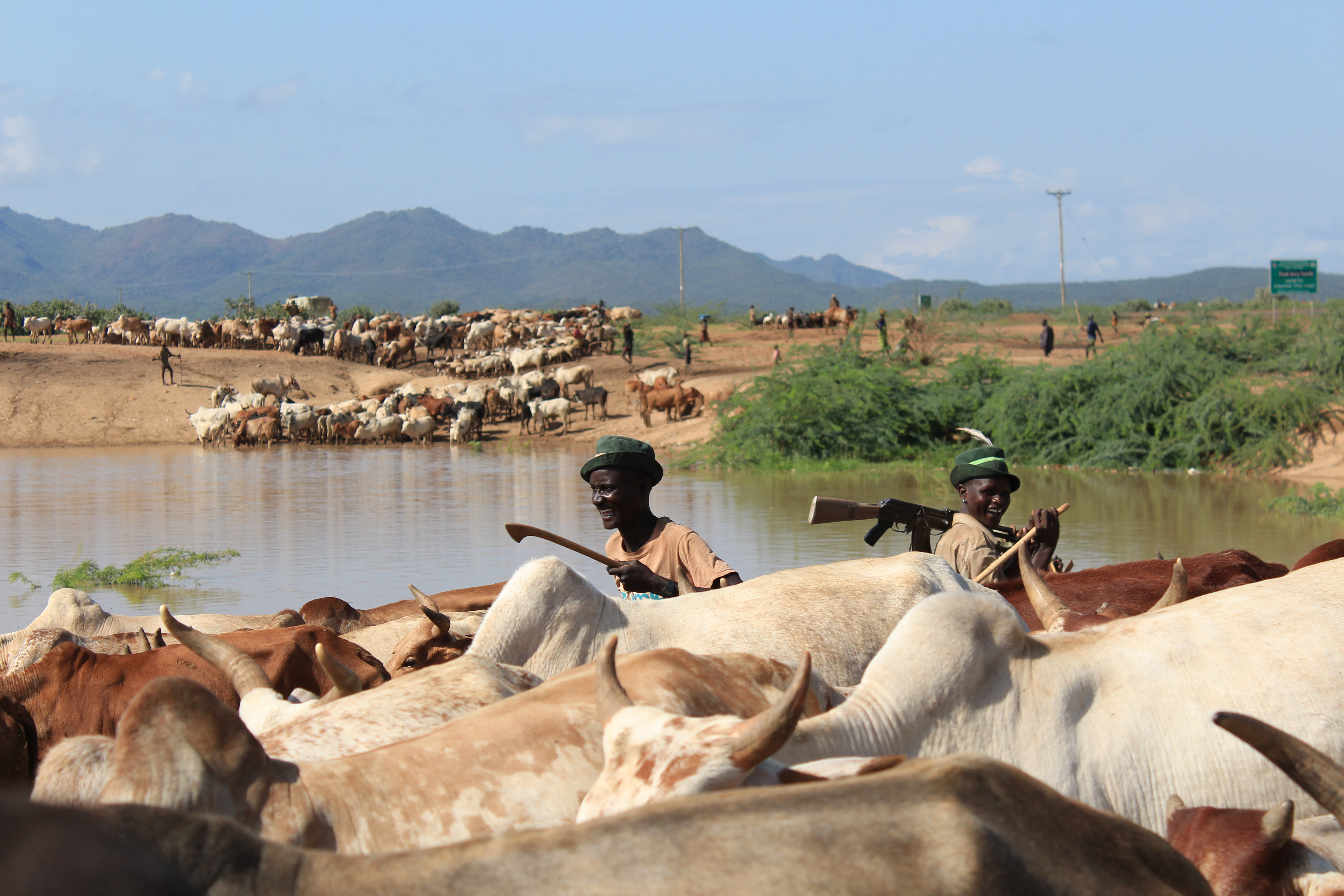 Pastoralists at waterpoint