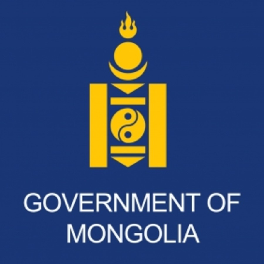 governmental organization