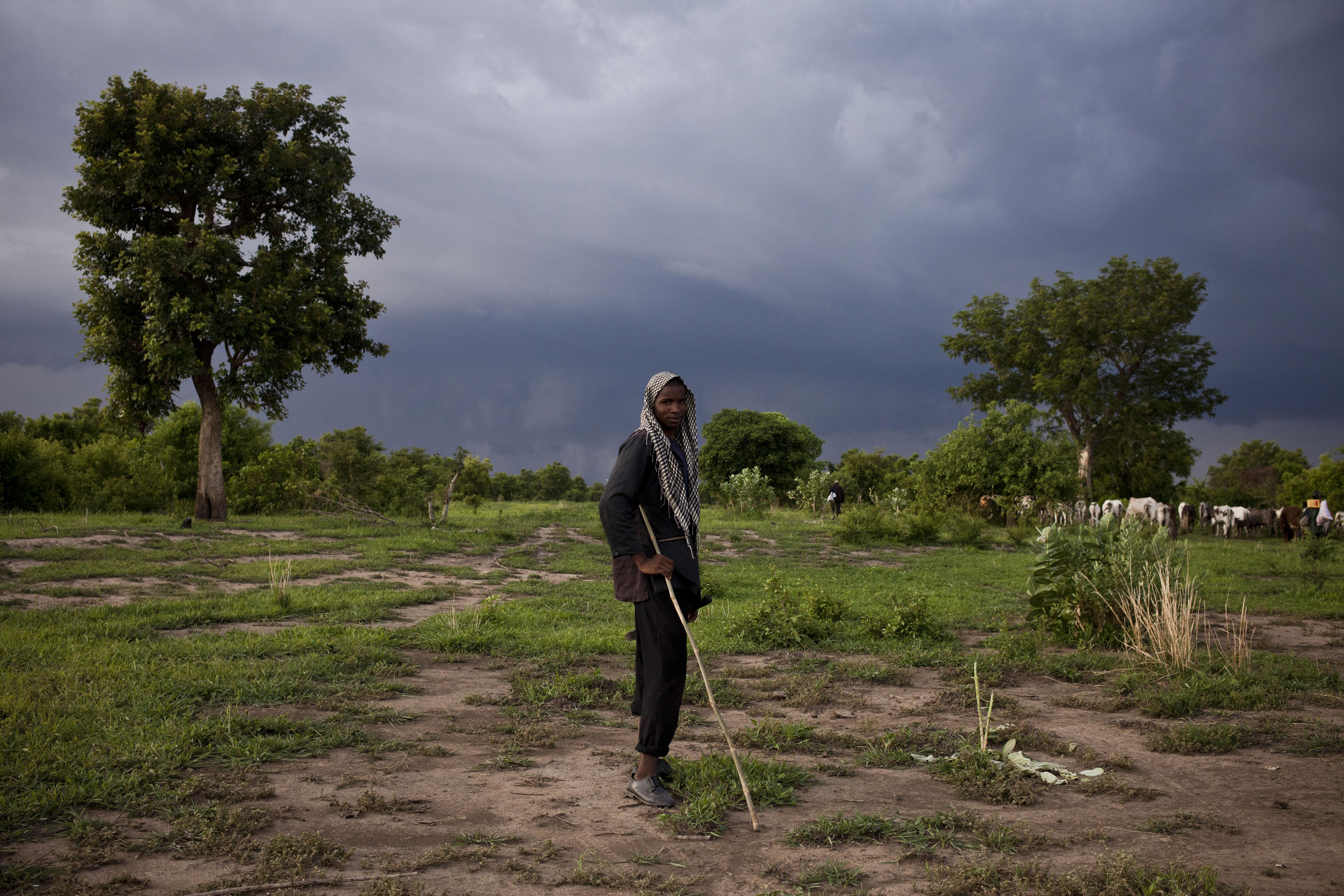Herder in Togo