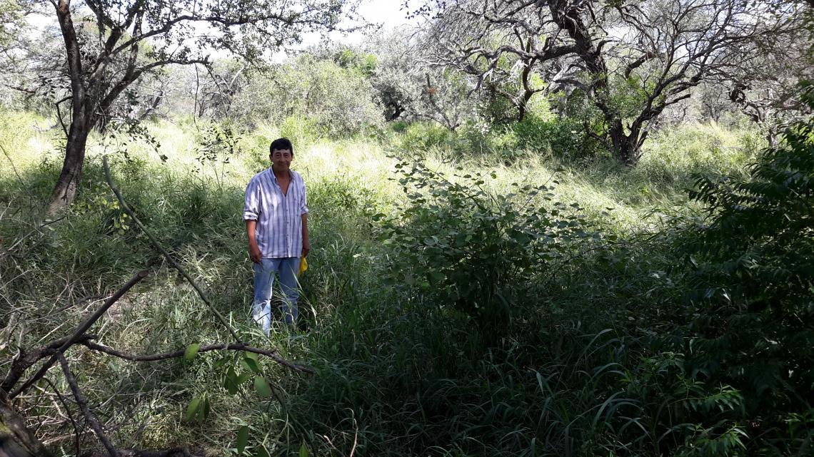 Man in rangelands