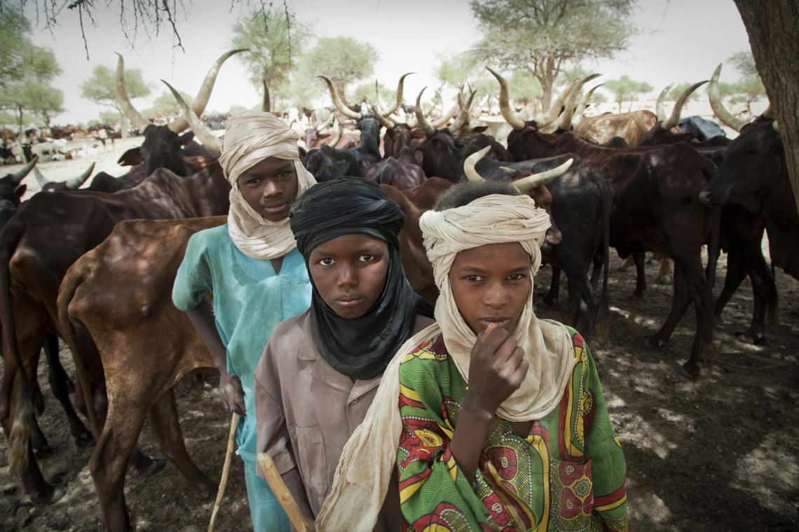 Herder boys in Niger