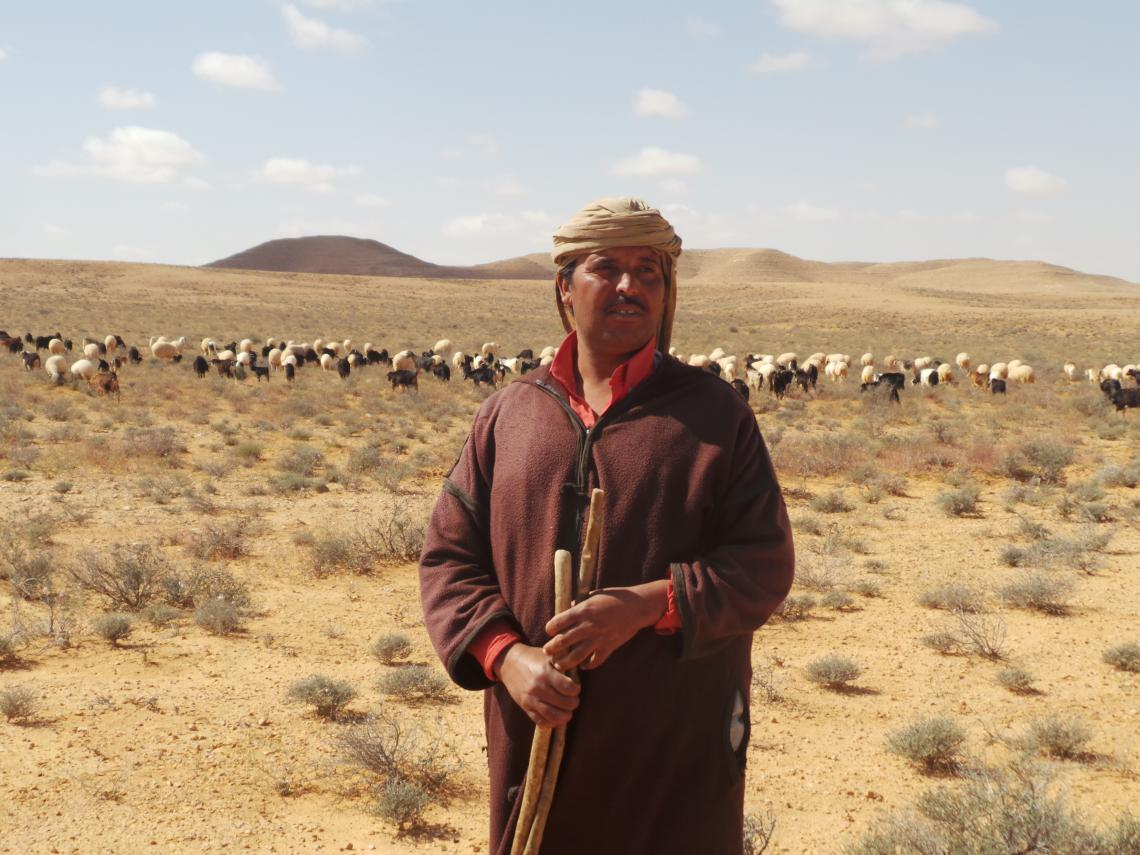 Pastoralist in Tunisia